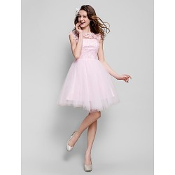 Australia Formal Dresses Cocktail Dress Party Dress Blushing Pink Plus Sizes Dresses Petite Ball Gown Jewel Short Knee-length Tulle